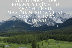 All Life forms Strive to their Maximum Potential - Victor Botto